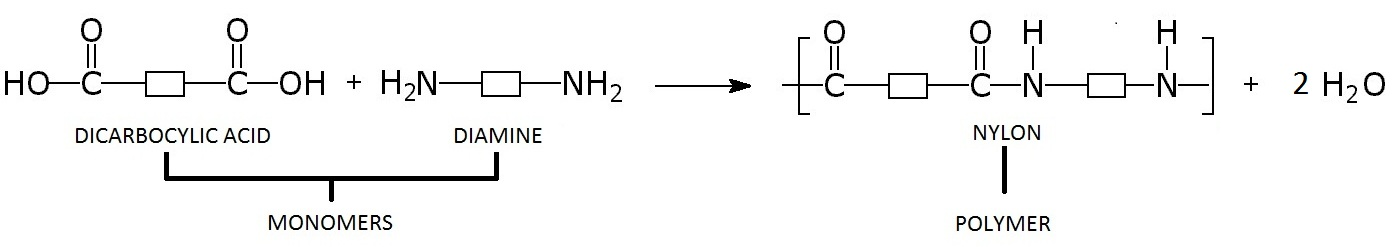 15 Synthesis of a Polymer: Nylon-6,6