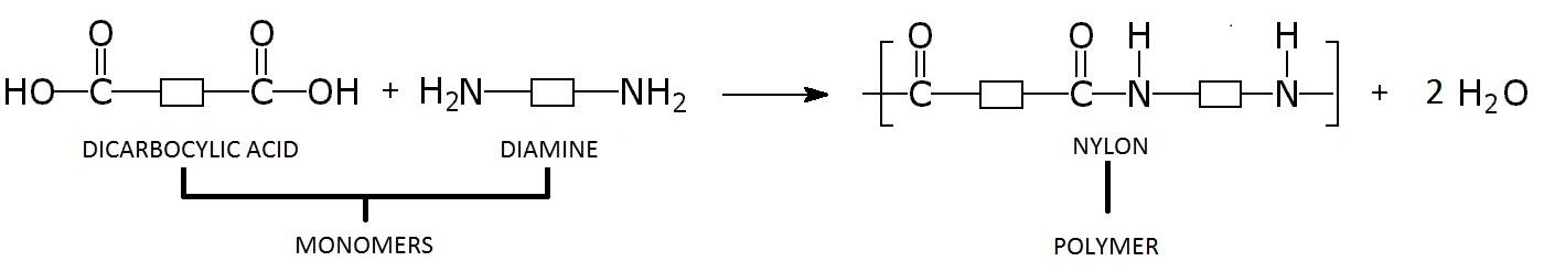 Formation Of Nylon 44