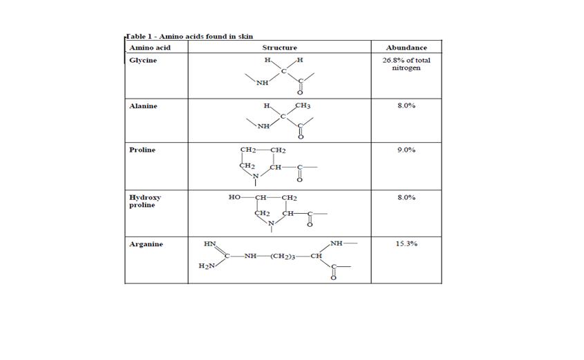 Amino%20acids%20found%20in%20skin.png